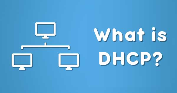 how DHCP work